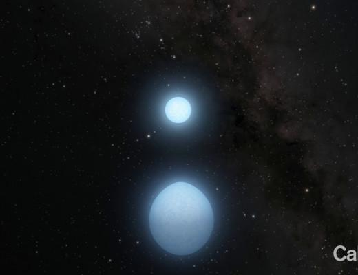 Хоёр хос жижиг цагаан одууд бие биеэ тойрон асар хурдтай эргэдэг
